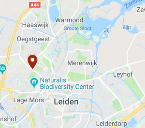 Advocaat Leiden